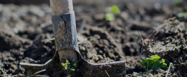 Gardening services Christchurch lifestyle property
